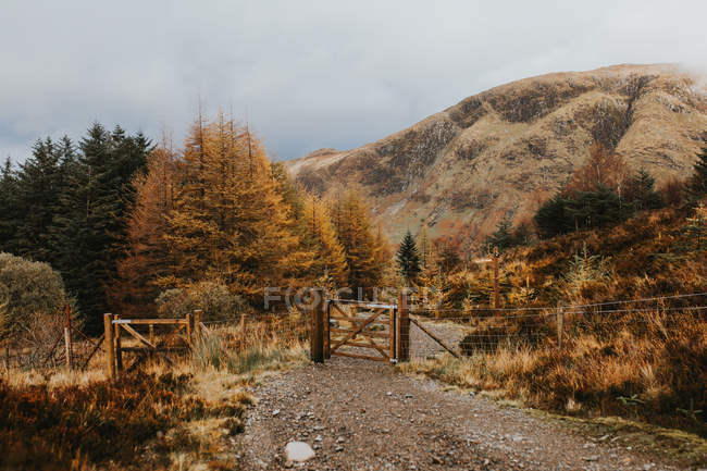 Portão pequeno e cerca na estrada rural em montanhas . — Fotografia de Stock