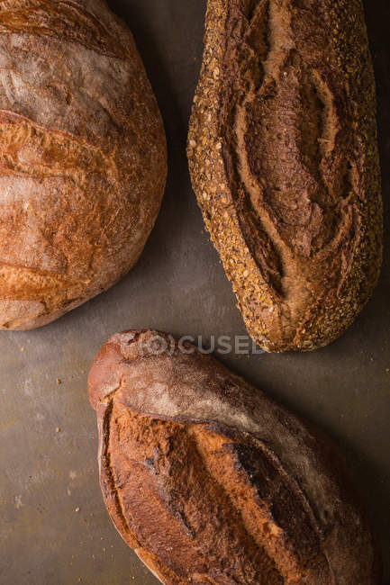 Close up view of freshly baked bread loafs — Stock Photo