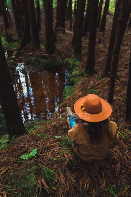 Вид сзади женщины, сидящей у зеленого пруда — стоковое фото