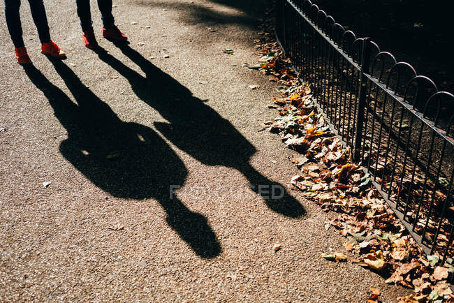 Two male shadows on bright ground of pavement with autumnal leaves — Stock Photo