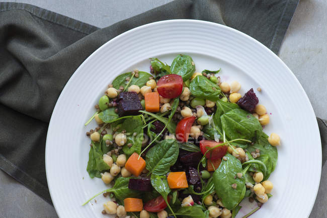 Непосредственно над видом тарелку с салатом из свежих овощей — стоковое фото