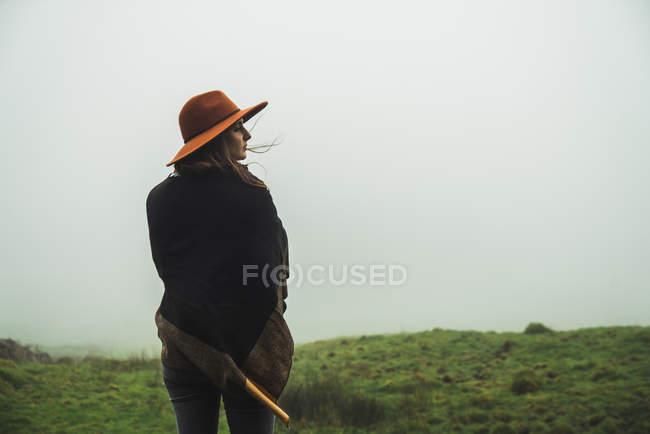 Задньої зору жінка в зелені поля Туманний себе — стокове фото