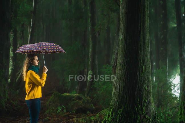 Femme avec parapluie, les balades en forêt venteux — Photo de stock