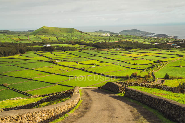 Picturesque landscape of bright green lands in sunlight with view of ocean on background. — Stock Photo