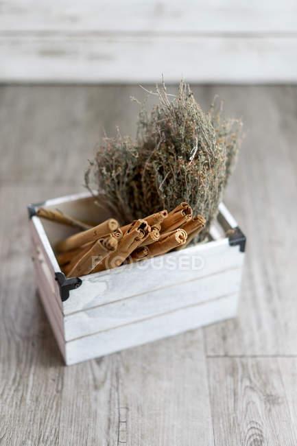 Herbes et bâtonnets aromatiques de cannelle dans une petite boîte en bois . — Photo de stock