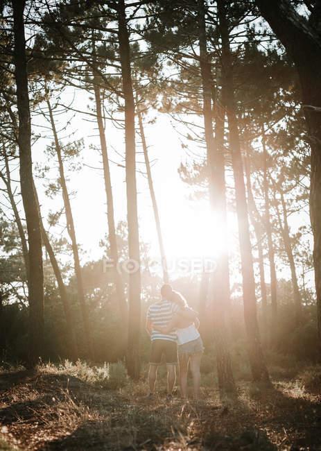 Coppia che abbraccia nella foresta soleggiata — Foto stock