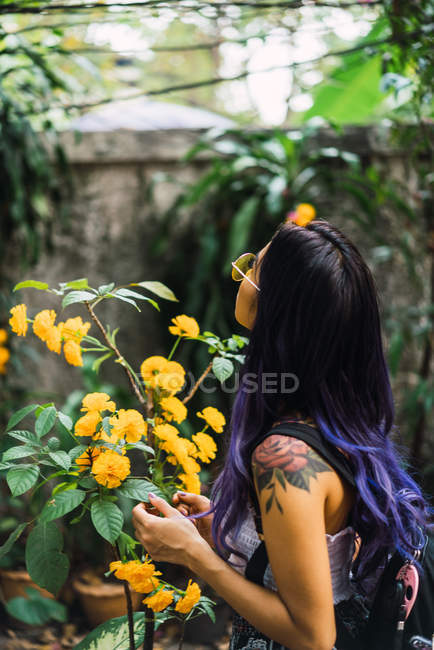 Side view of woman touching yellow flower — Stock Photo