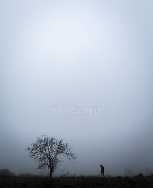 Vista lateral da pessoa em pé na árvore no campo no dia nebuloso . — Fotografia de Stock