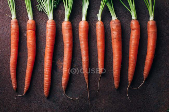 Fila de zanahorias frescas en fondo metálico oscuro - foto de stock