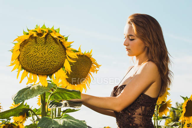 Молодая женщина позирует с подсолнухами над небом — стоковое фото