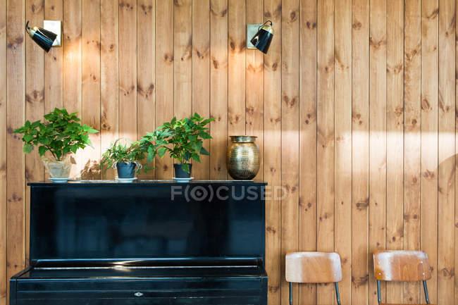 Linha de vasos de plantas em piano pela parede de madeira — Fotografia de Stock