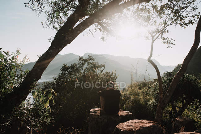 Rear view of man sitting on rock among trees on background of amazing nature — Stock Photo