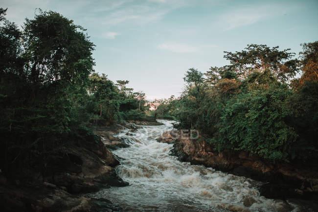 Paesaggio di violento torrente di acqua sporca una natura — Foto stock