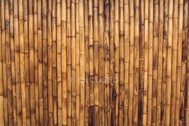 Tiro de quadro completo de bambu seco marrom varas de fundo de textura. — Fotografia de Stock