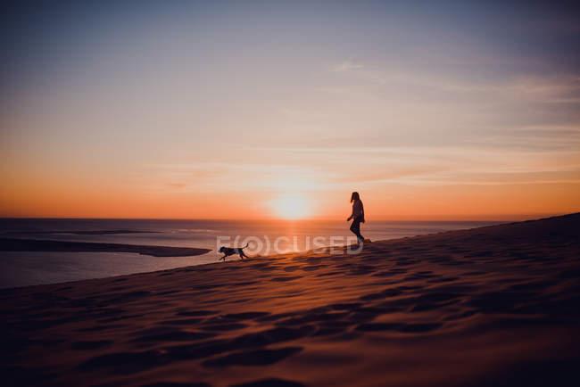 Silhouettes de personne et chien courant sur la plage au coucher du soleil . — Photo de stock