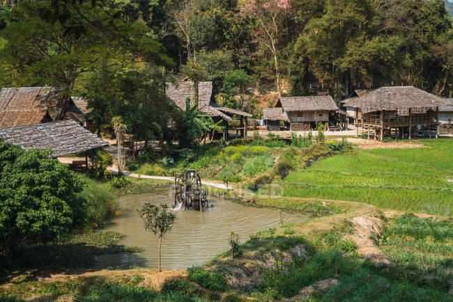 Далекий вид на восточную деревню в тропическом лесу — стоковое фото
