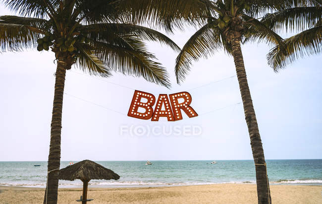 Bar lettering sign hanging between palms at beach — Stock Photo