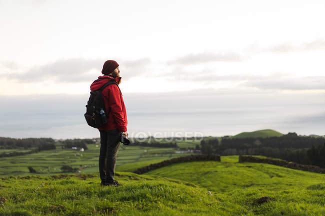 Vista lateral do turista barbudo em pé com câmera no campo verde — Fotografia de Stock