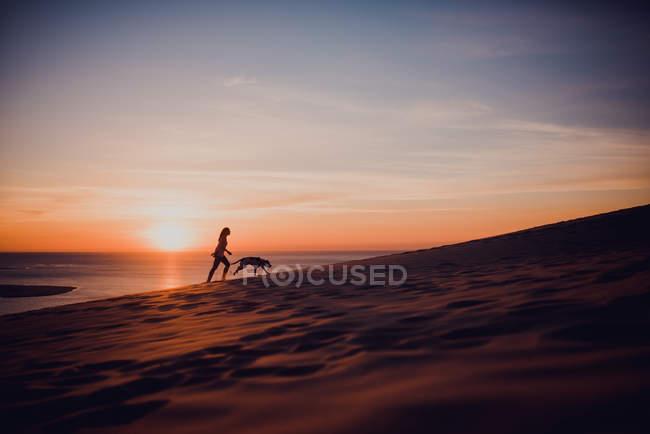 Siluetas de mujer y perro paseando en la orilla al atardecer - foto de stock
