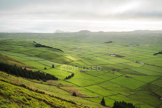 Pittoresca splendida vista sui campi verdi nella giornata nuvolosa . — Foto stock