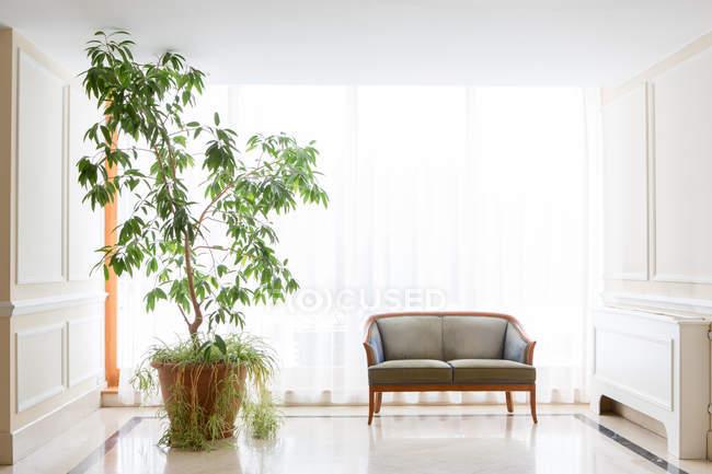Grande plante en pot par fauteuil à l'hôtel — Photo de stock