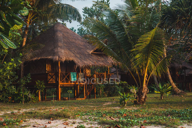 Small wooden house with straw roof at tropical lawn \u2014 Stock Photo & Small wooden house with straw roof at tropical lawn \u2014 copy space ...