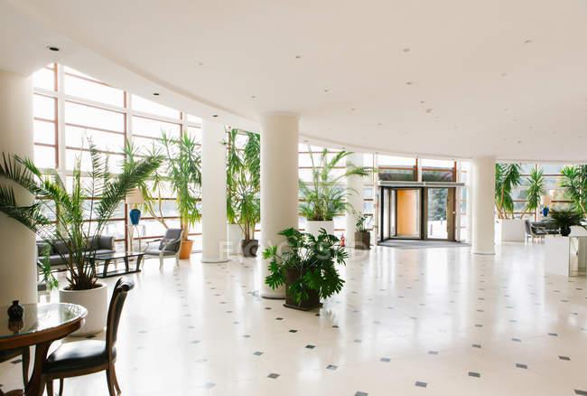 Інтер'єр залу великий вхід з рослин горщиків в готелі — стокове фото