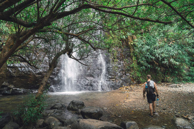 Back view of tourist man walking to the waterfall in the forest. — Stock Photo