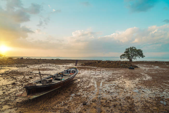 Fishing boat and tree at sand ocean shore — Stock Photo