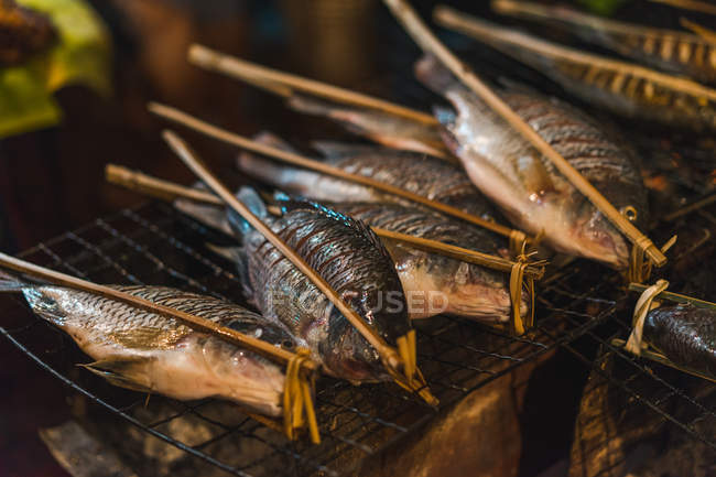 Close-up raw whole small fish on skewers prepared for cooking. — Stock Photo