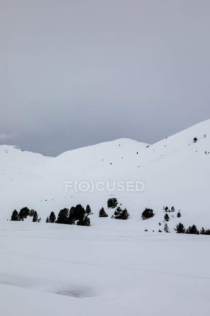Landscape of snowy hills and trees over gloom sky — Stock Photo