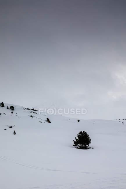 Снежный пейзаж горного склона над серое небо — стоковое фото