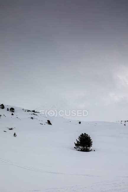 Snowy landscape of mountain slope over grey sky — Stock Photo