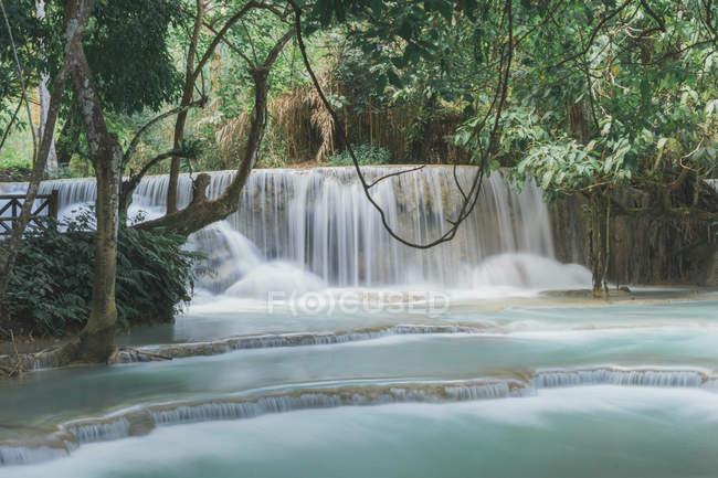 Идиллический вид на красивый водопад и реку в лесу . — стоковое фото