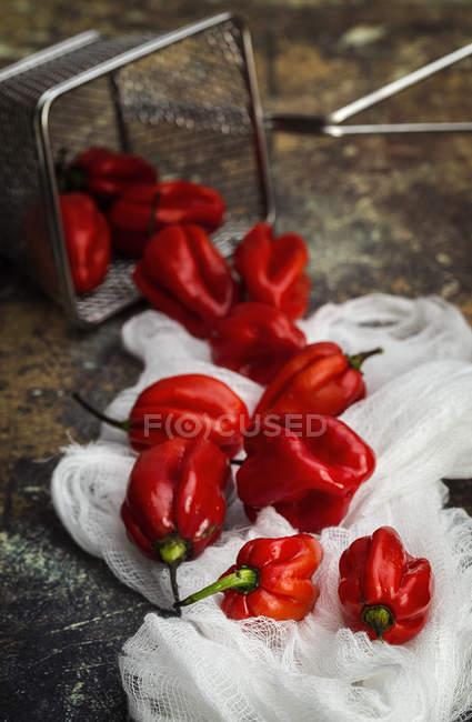 Natureza morta de pimentas vermelhas frescas em tecido branco rural à mesa — Fotografia de Stock