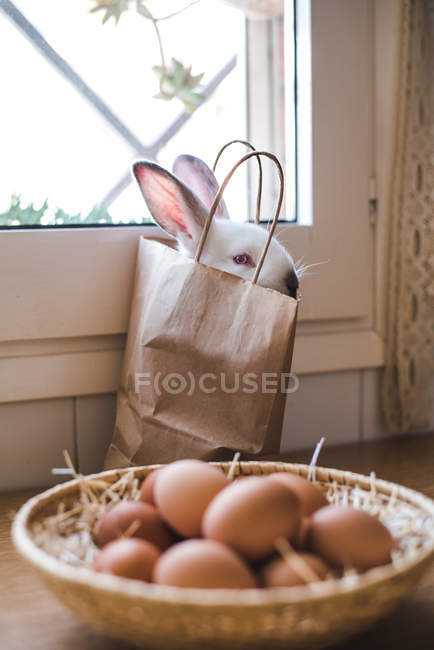 Cute white bunny sitting in paper bag at basket with eggs. — стоковое фото