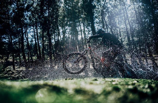 Vista lateral do ciclista pulando em mountain bike na floresta e salpicos de água — Fotografia de Stock