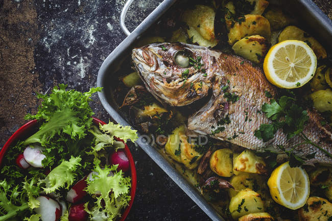 Roasted fish with potatoes and bowl of salad. — Stock Photo