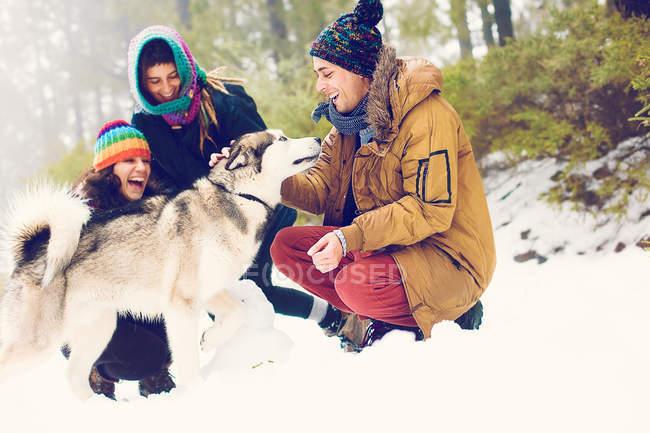 Les gens joyeux caressant chien dans les bois de neige — Photo de stock