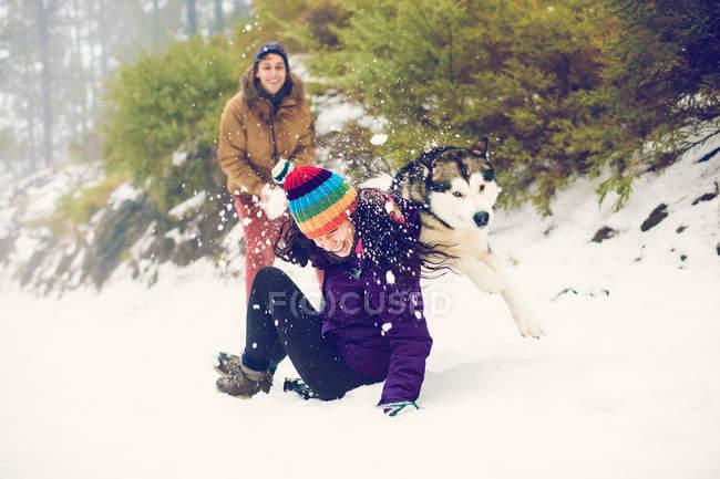 Amigos alegres, jogando bolas de neve com o cão no bosque — Fotografia de Stock