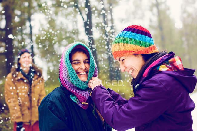 Amigos alegres, jogando bolas de neve no bosque de inverno — Fotografia de Stock