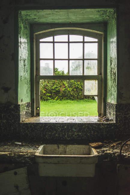 Giardino verde attraverso vetri rotti di edificio rurale abbandonato . — Foto stock