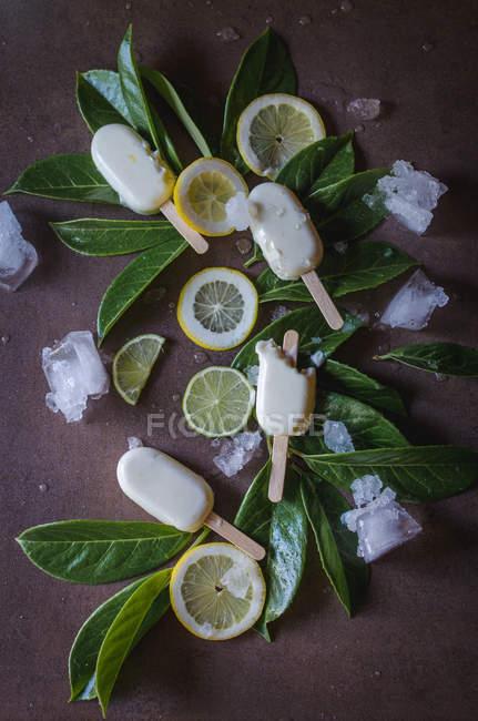 Acima de saboroso doce sorvete servido com folhas e fatias de limão. — Fotografia de Stock