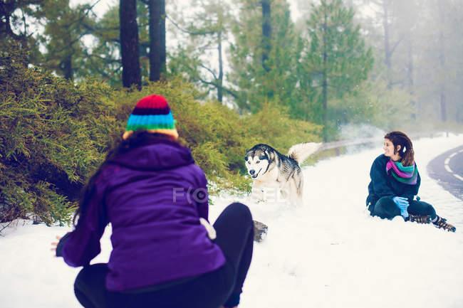Mulheres rindo, brincando com o cachorro na estrada Nevada — Fotografia de Stock
