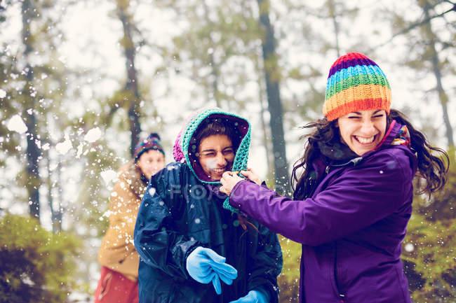 Mulheres alegres escondida das bolas de neve na floresta — Fotografia de Stock