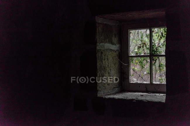Rami verdi dietro piccola finestra rustica in camera oscura . — Foto stock