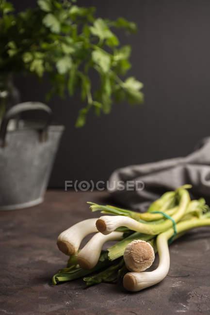 Stillleben eines grünen Knoblauchstraußes auf dem Tisch — Stockfoto