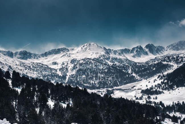Пейзаж суровых гор, покрытых снегом и черными деревьями, растущими на склонах. — стоковое фото