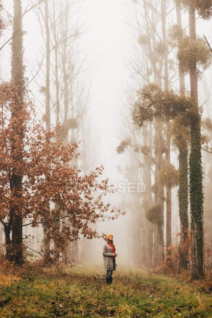 Mujer de pie en el bosque brumoso - foto de stock