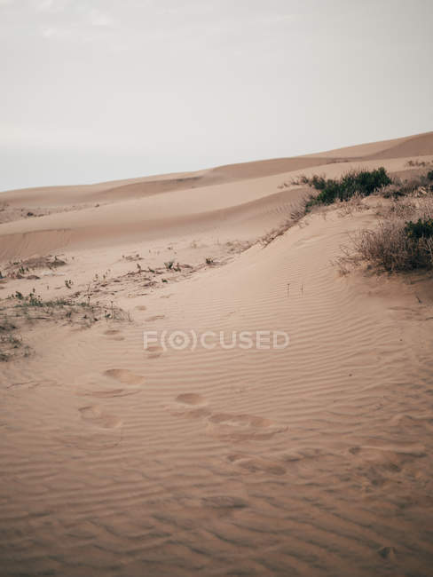 Sandy dunes in cloudy day — Stock Photo
